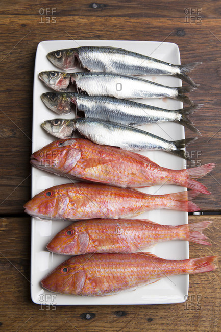 Fresh fish lined up on a white plate