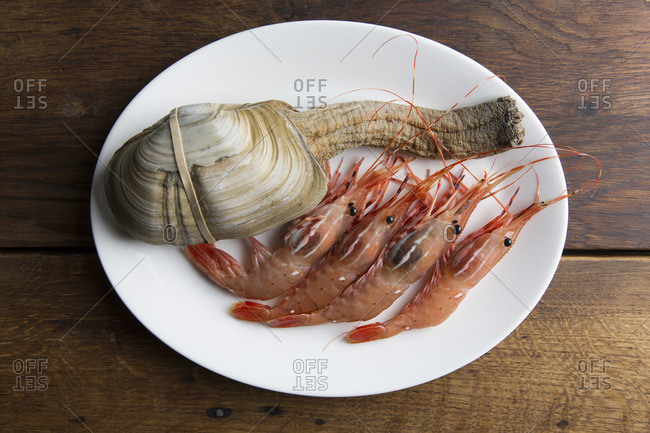 Fresh geoduck and royal red shrimps on plate