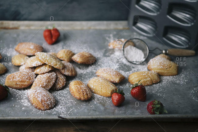 Madeleines dusted with powdered sugar