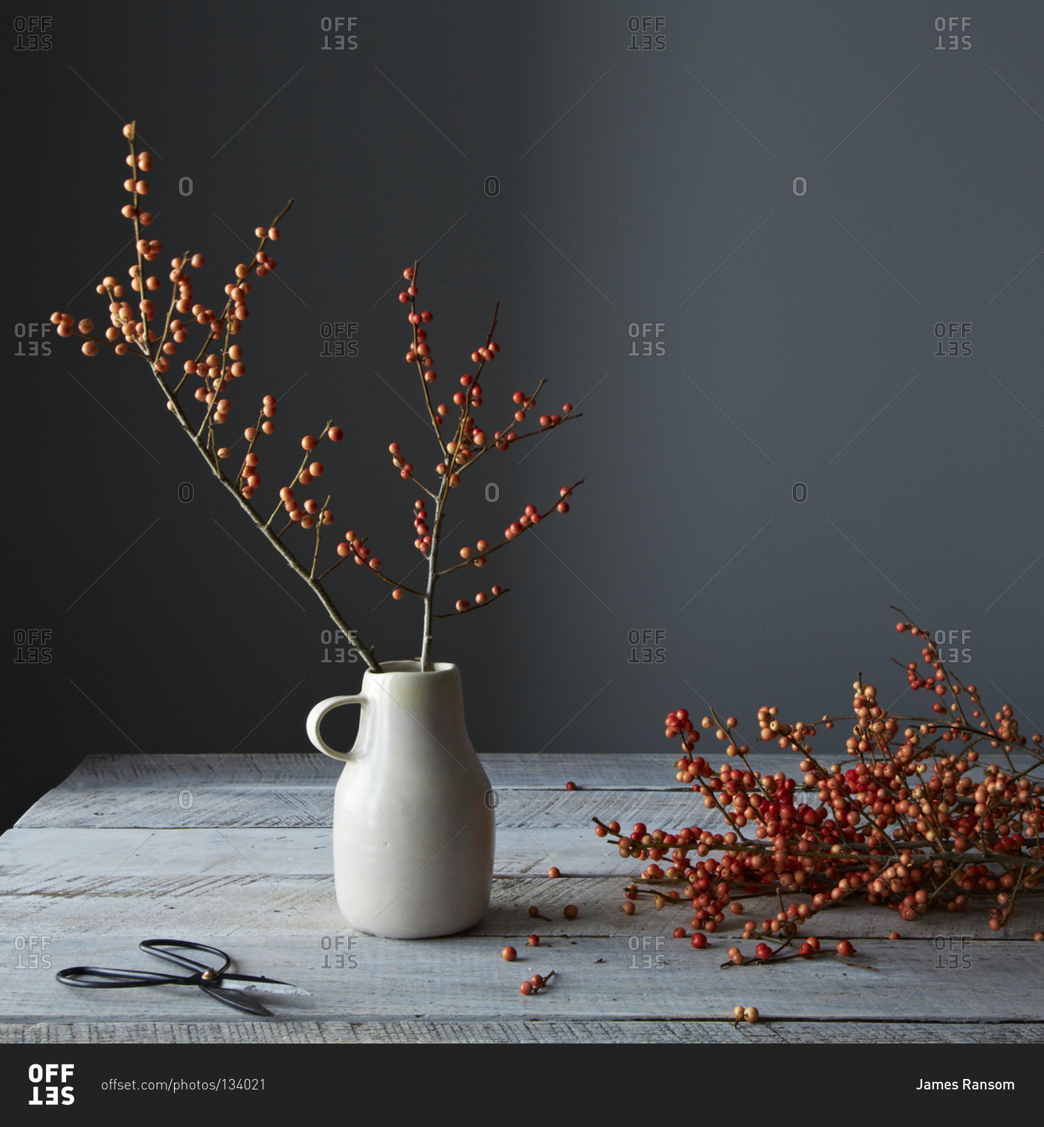 Still life of dried berry branches in a ceramic vase stock photo still life of dried berry branches in a ceramic vase reviewsmspy