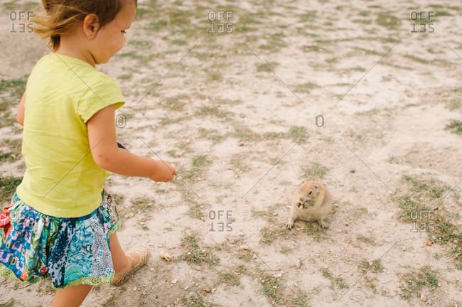 Girl feeding marmot