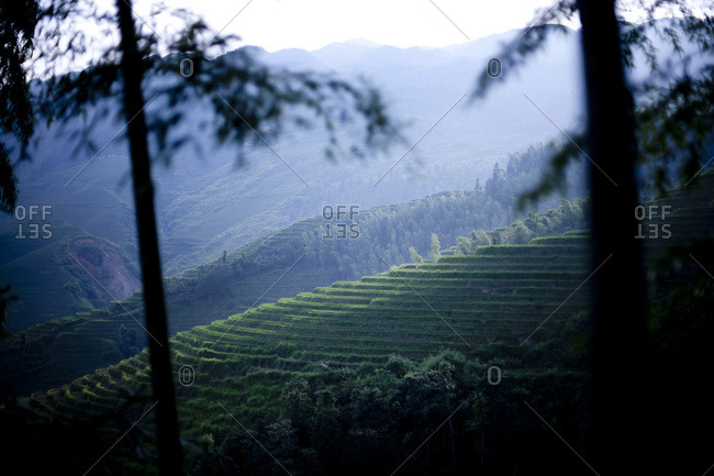 Landscape of a rice terraces in Longsheng, China