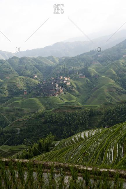 Rice terraces in Longsheng, China