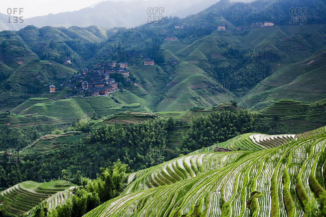 View of rice terraces in Longsheng, China