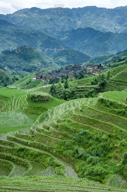 Rice terraces around a village in Longsheng, China