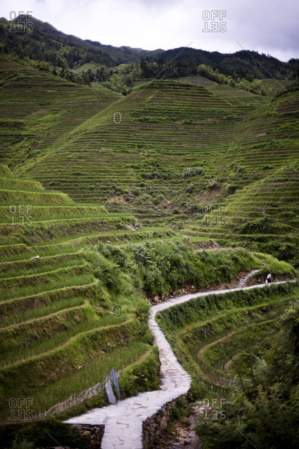 Path on a rice terrace in Longsheng, China