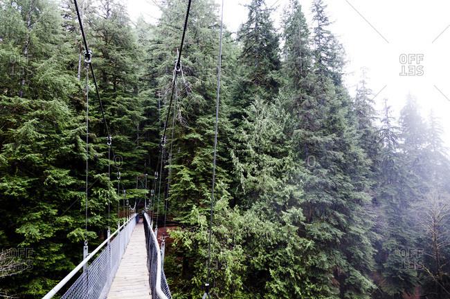 Suspension bridge in Oregon, USA