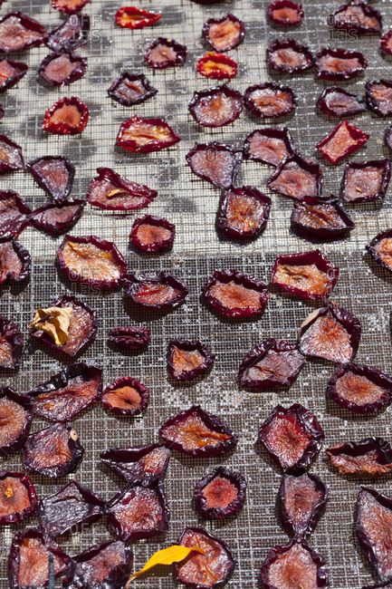 Sun dried plums on a grid