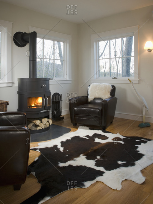 Living room with wood burning stove and animal skin rug