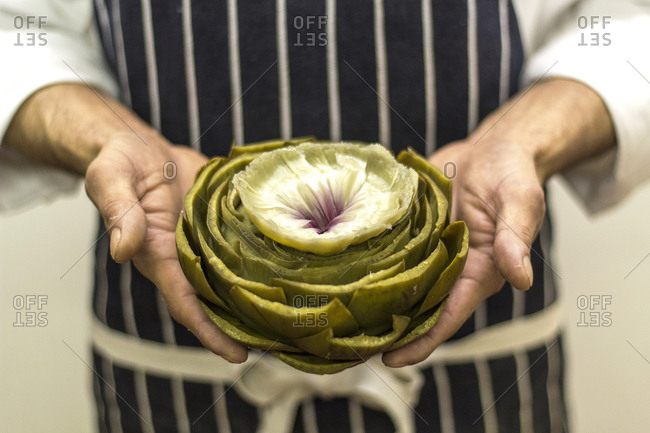 Chef holding an artichoke in his hands
