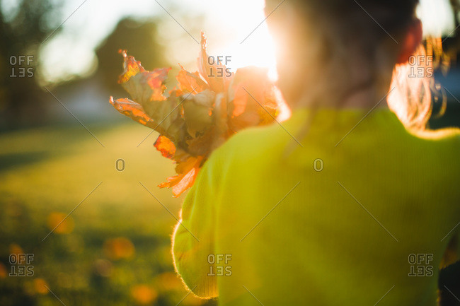 Rear view of girl standing with dry leaves in her hand