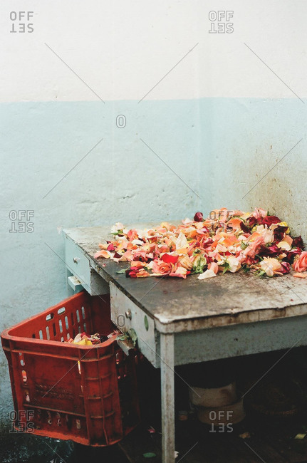 Rose petals on a tabletop