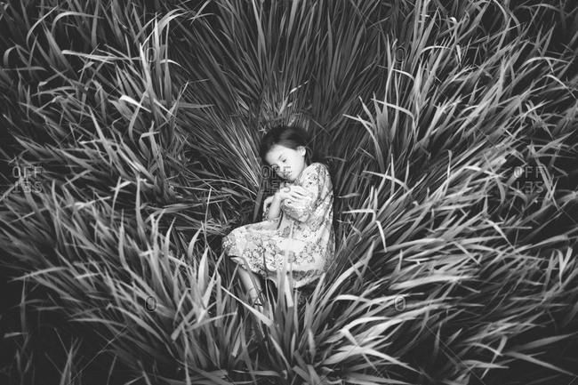 Little girl sleeping in tall grass