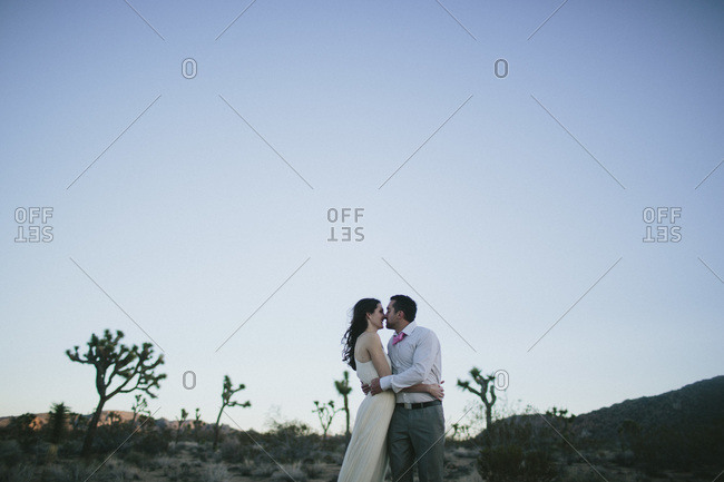 Newlyweds kissing in a field at dusk