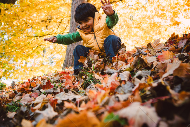 Low angle view of smiling boy playing with dry leaves