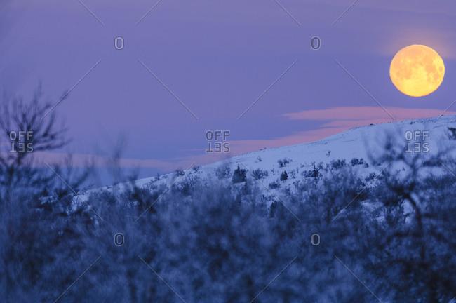 Full moon over winter landscape