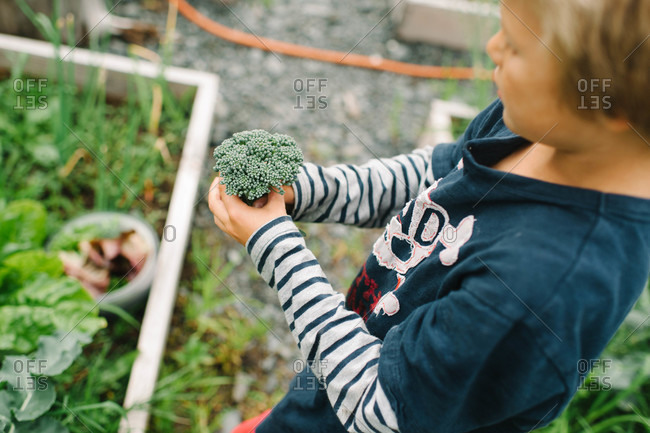 Boy standing with Broccolini