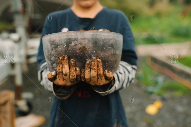 Boy holding tuber roots in a plastic container