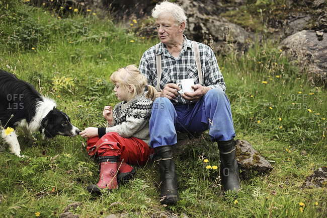 Faroe Islands - August 13, 2010: A man and his granddaughter take a break after herding sheep