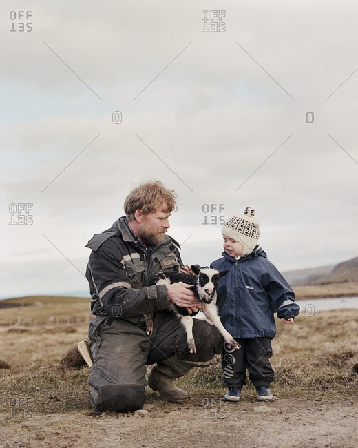 Faroe Islands - June 1, 2012: Sigert Patursson, one of the last Faroese farmers, holds a lamb with his son