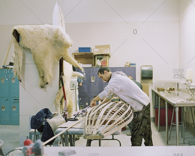 Barrow, Alaska, USA - December 5, 2013: An Inupiat man builds a canoe
