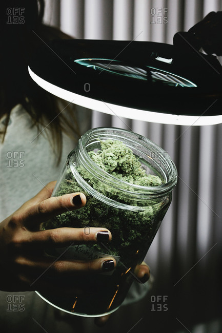 Woman holding a jar of marijuana buds under a magnifying glass