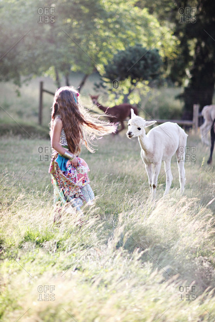 Girl standing with a llama