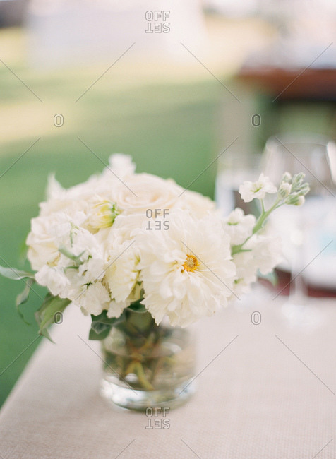 Close up of white flowers in a vase