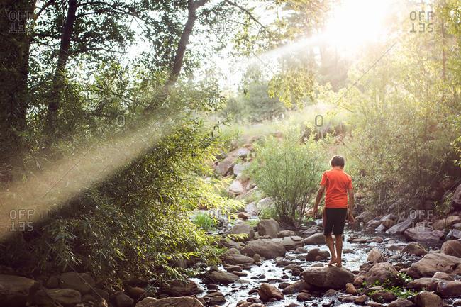 A boy walks along a rocky stream in a forest