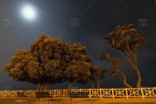 Moonlit scene in Palisades Park