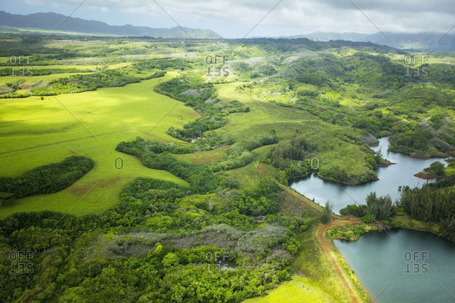 Landscape of lush trees and fields with mountains in the distance, Hawaii