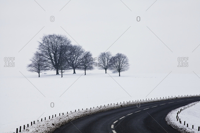 A road curving by a snow covered field and trees in Chatsworth Park, Derbyshire