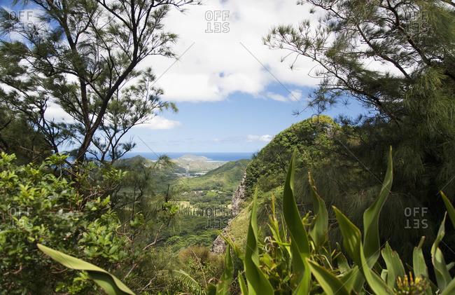 Viewpoint, near Nuuanu Pali, lookout Windward coast in distance