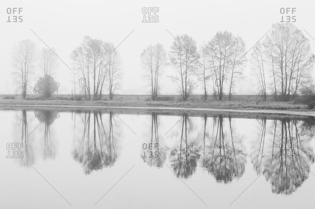 Fog descends on the Alouette River