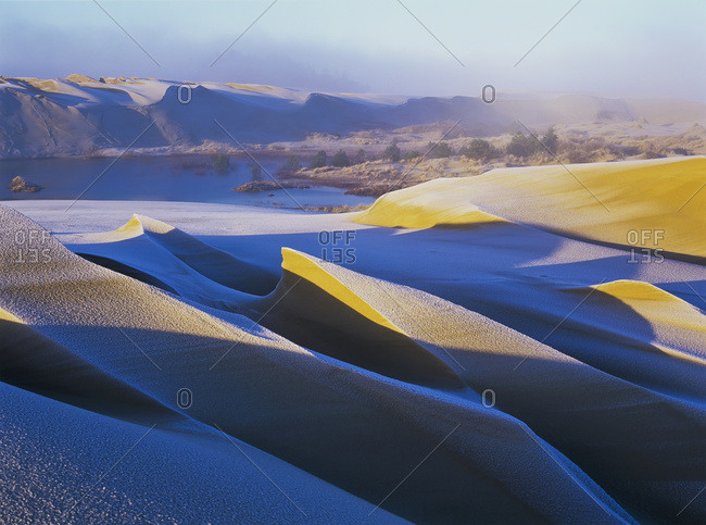 Frost and sunlight decorate the sand dunes, Oregon