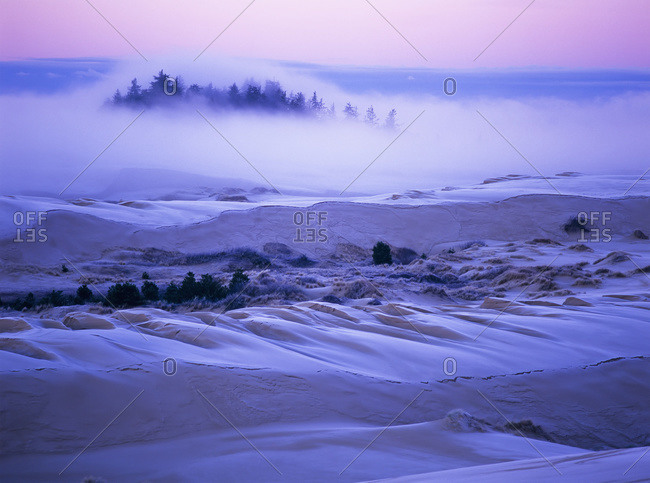 Fog over the sand dunes at dawn after a heavy frost, Oregon