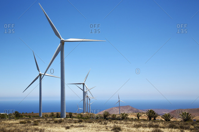 Wind turbines and blue sky, Lanzarote, Spain