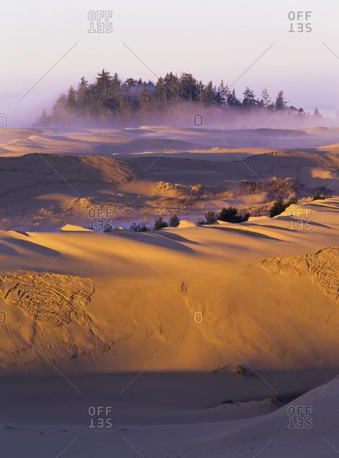 Morning sun warms the dunes, Lakeside, Oregon,