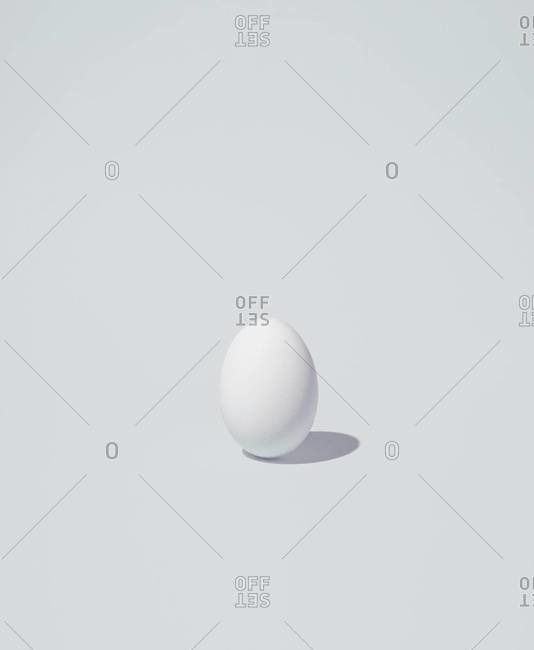 An egg on a white background