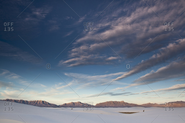 Landscape in White Sands National Monument