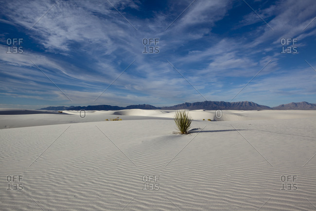 Barren landscape at White Sands National Monument