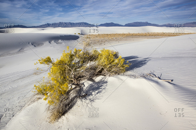 View of White Sands National Monument