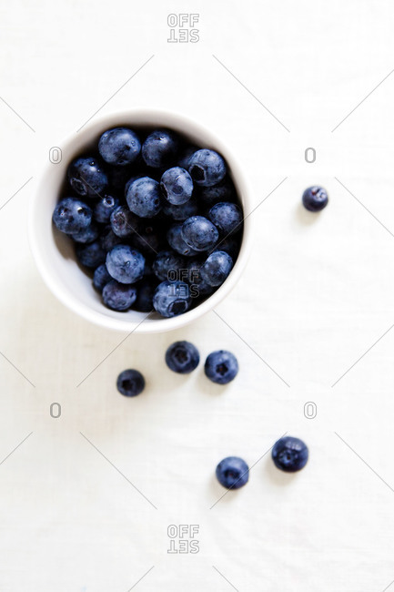 Cup of blueberries - Offset Collection