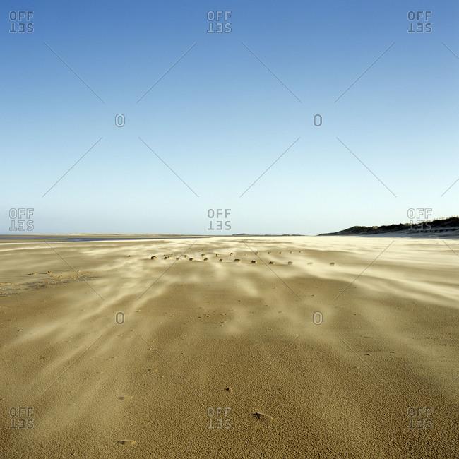 Sand blows along a beach