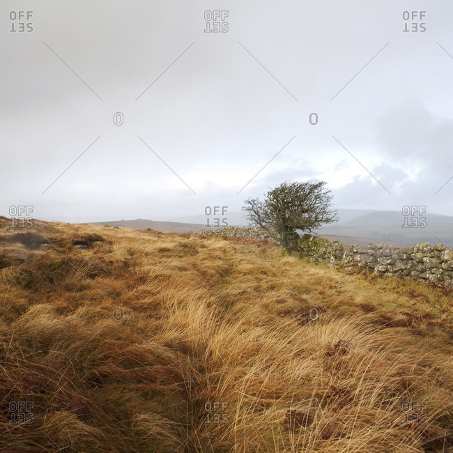 Clouds gather over the moorland