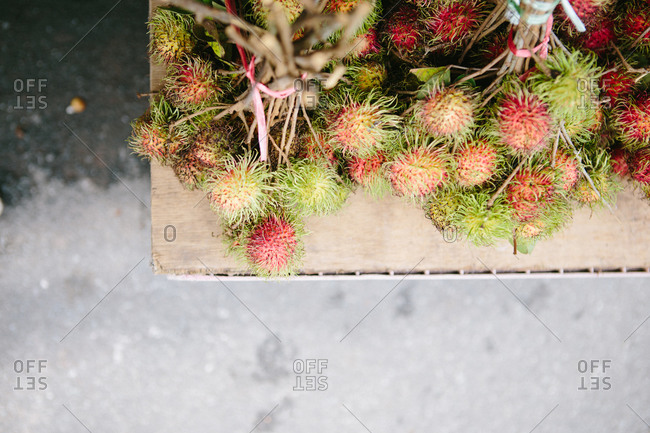 Bunch of thistle flowers on a table