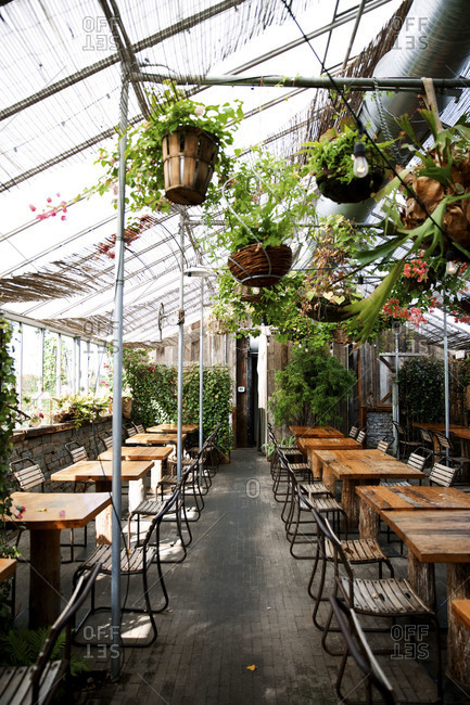 Greenhouse turned restaurant