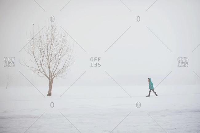 Boy walking in snow by tree