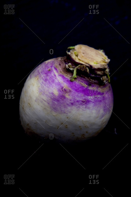 A single turnip - Offset Collection