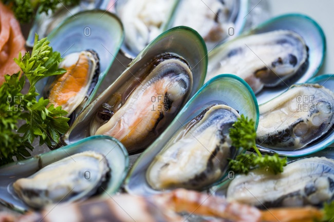 Close up of fresh muscles on display at a restaurant in Danang, Vietnam